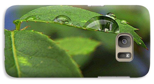 Galaxy Case featuring the photograph Drop Leaf by Suzy Piatt
