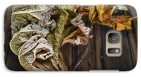Galaxy Case featuring the photograph Dry Leaves 11 by Vladimir Kholostykh