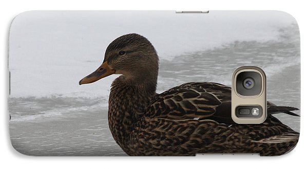 Galaxy Case featuring the photograph Duck On Ice by John Telfer