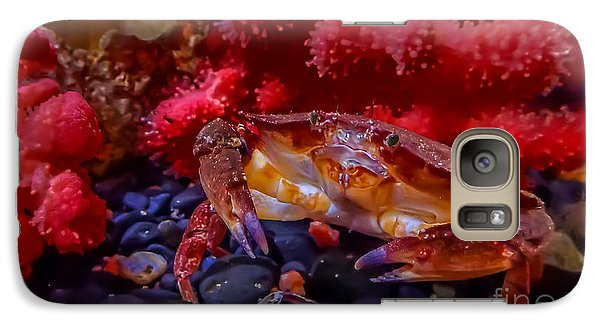 Dungeness Crab Galaxy S7 Case