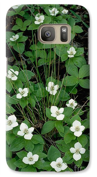Galaxy Case featuring the photograph Dwarf Dogwood by Doug Herr