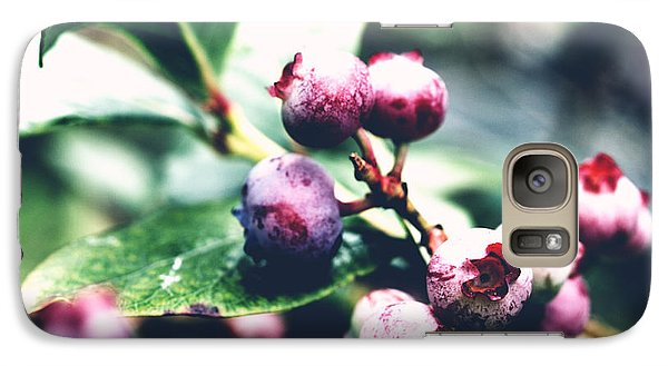 Galaxy Case featuring the photograph Early Blueberries by Rachel Mirror