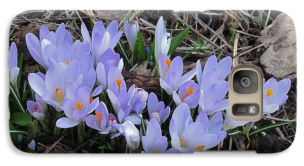Early Crocuses Galaxy S7 Case