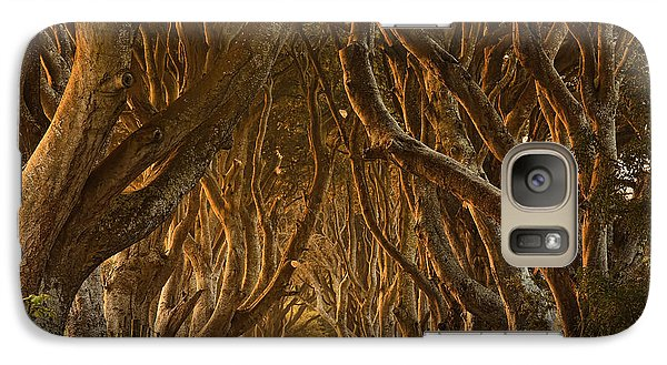 Colours Galaxy S7 Case - Early Morning Dark Hedges by Derek Smyth