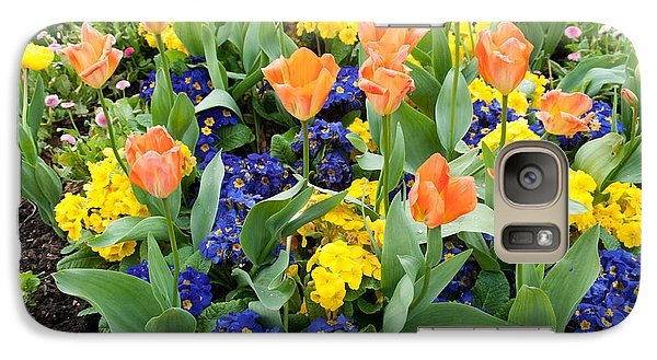 Galaxy Case featuring the photograph Early Spring by Geraldine Alexander