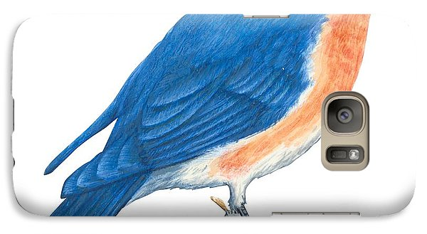 Eastern Bluebird Galaxy Case by Anonymous