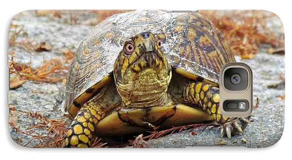 Galaxy Case featuring the photograph Eastern Box Turtle by Cynthia Guinn