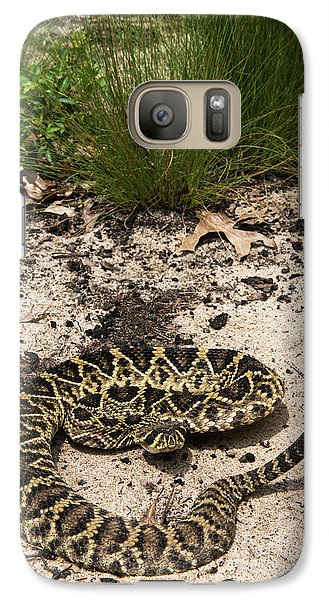 Eastern Diamondback Rattlesnake Galaxy S7 Case by Pete Oxford
