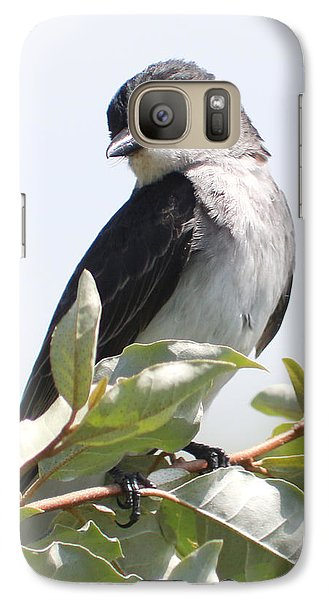 Galaxy Case featuring the photograph Eastern Kingbird by Anita Oakley