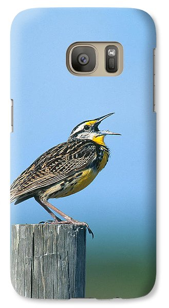 Eastern Meadowlark Galaxy Case by Paul J. Fusco