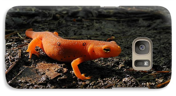Eastern Newt Red Eft Galaxy S7 Case