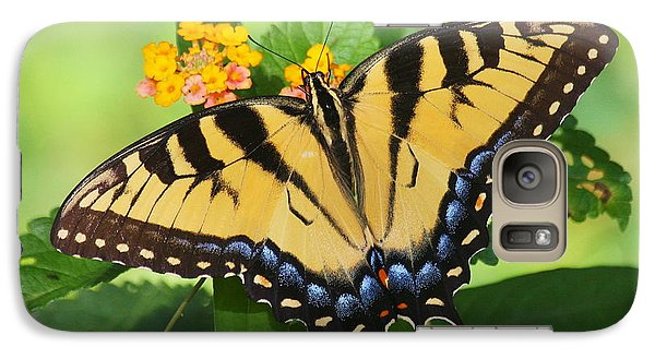 Galaxy Case featuring the photograph Eastern Tiger Swallowtail Butterfly by Myrna Bradshaw