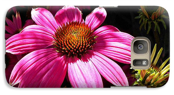 Galaxy Case featuring the photograph Echinacea Blooms by Suzy Piatt