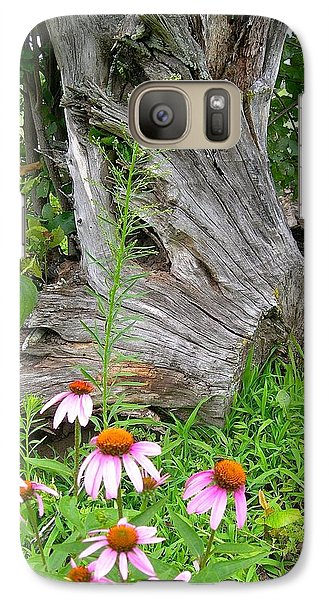 Galaxy Case featuring the photograph Echinacea Stumpage by Randy Rosenberger
