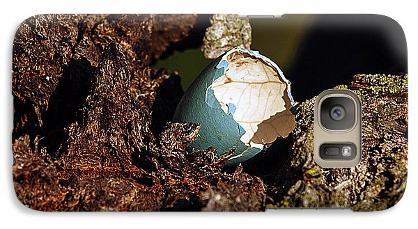 Galaxy Case featuring the photograph Eggs Of Nature 1 by David Lester