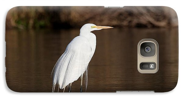 Galaxy Case featuring the photograph Egret At Daybreak by Ruth Jolly