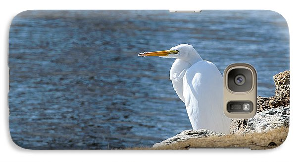 Galaxy Case featuring the photograph Egret by John Johnson