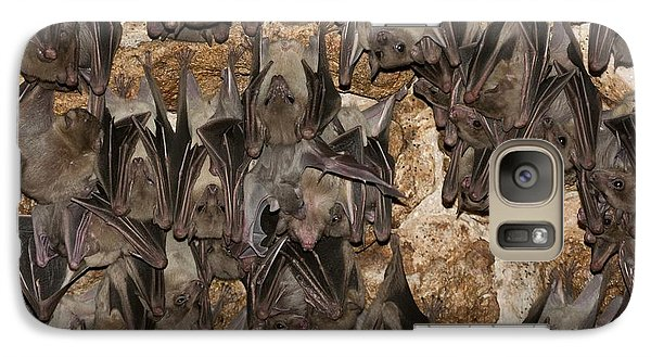 Egyptian Fruit Bat Rousettus Aegyptiacus Galaxy S7 Case by Photostock-israel
