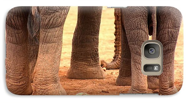 Galaxy Case featuring the photograph Elephant Family by Amanda Stadther
