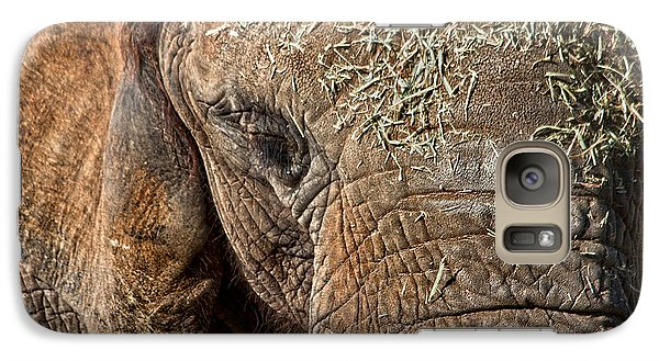 Elephant Never Forgets Galaxy S7 Case by Miroslava Jurcik