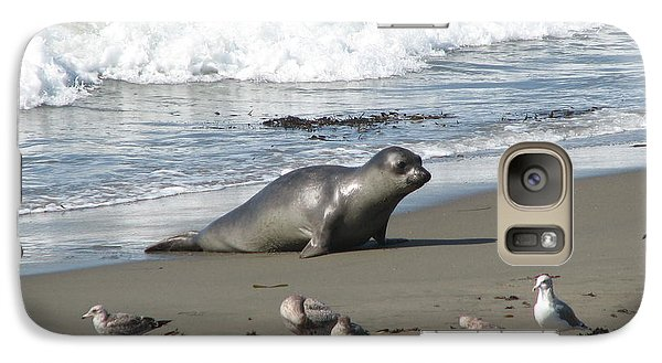Galaxy Case featuring the photograph Elephant Seal On Piedras Blancas Beach by Jan Cipolla
