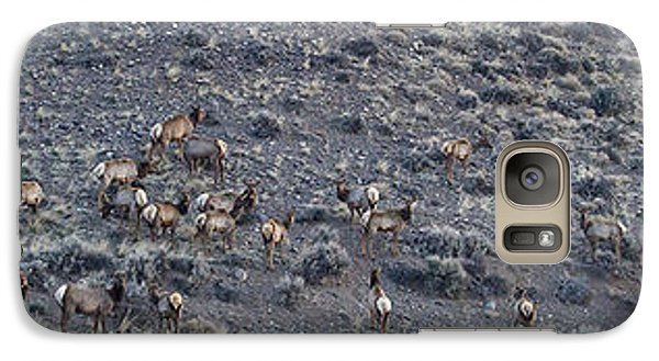 Galaxy Case featuring the photograph Elk Herd On A Hillside Panoramic - 12x54.5 by J L Woody Wooden
