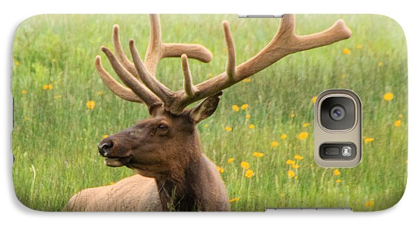 Galaxy Case featuring the photograph Elk In The Flowers by Cathy Donohoue