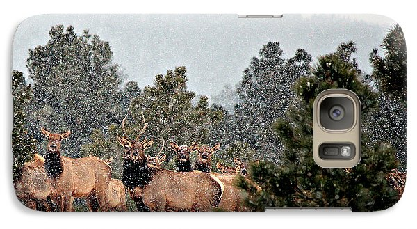 Galaxy Case featuring the photograph Elk In The Snowing Open by Barbara Chichester