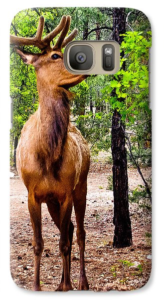 Galaxy Case featuring the photograph Elk - Mather Grand Canyon by Bob and Nadine Johnston