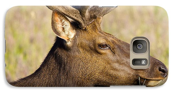 Galaxy Case featuring the photograph Elk Profile by Todd Kreuter