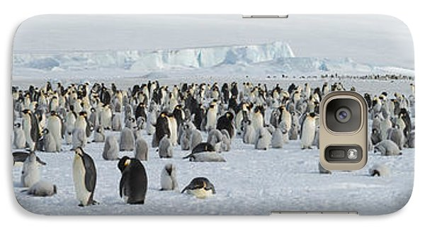 Emperor Penguins Aptenodytes Forsteri Galaxy S7 Case by Panoramic Images