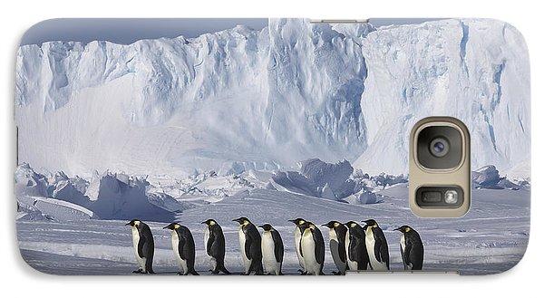 Emperor Penguins Walking Antarctica Galaxy S7 Case by Frederique Olivier