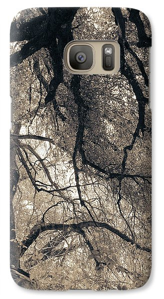 Galaxy Case featuring the photograph Enchanted Forest by Katie Wing Vigil