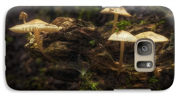 Spider Galaxy S7 Case - Enchanted Forest by Scott Norris