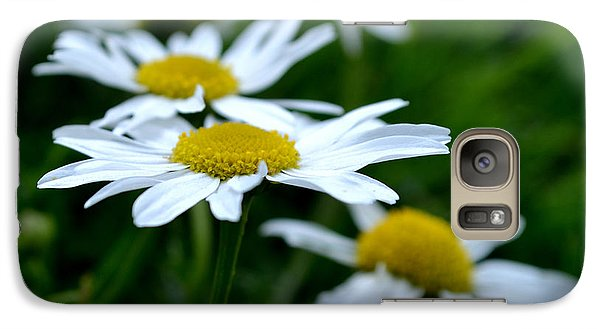 Galaxy Case featuring the photograph English Daisies by Scott Lyons