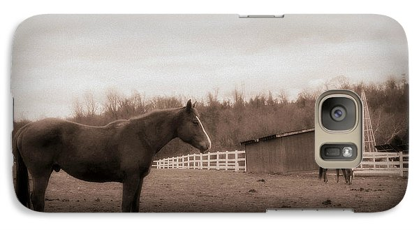 Galaxy Case featuring the photograph Equine Reverie by Aurelio Zucco
