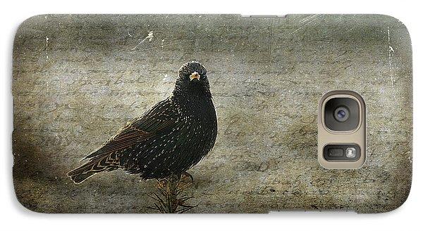 Starlings Galaxy S7 Case - European Starling by Cindi Ressler