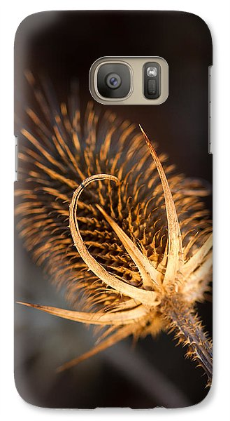 Galaxy Case featuring the photograph Evening Thistle by Haren Images- Kriss Haren
