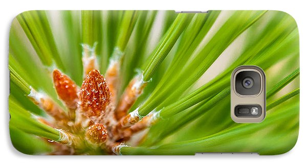 Galaxy Case featuring the photograph Evergreen 001 by Todd Soderstrom