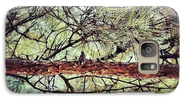 Galaxy Case featuring the photograph Evergreen Bird by Tara Potts