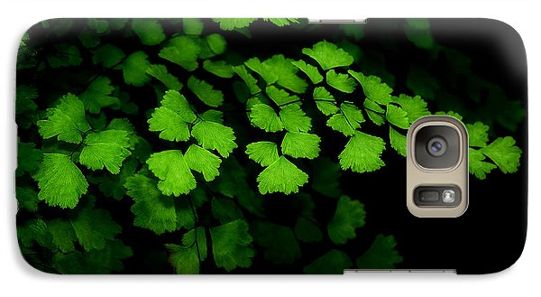 Galaxy Case featuring the photograph Evergreen by Lorenzo Cassina