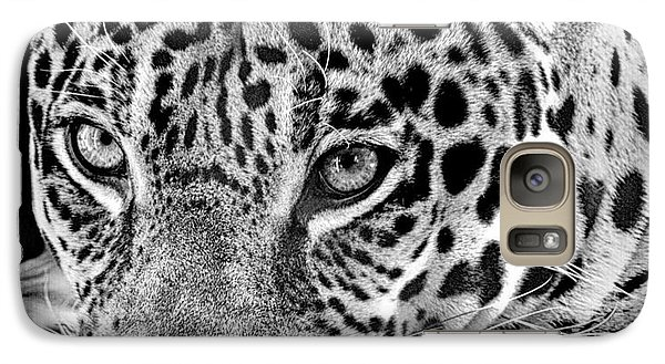 Galaxy Case featuring the photograph Exotic Jaguar by Ruth Jolly