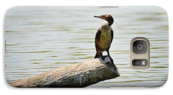 Galaxy Case featuring the photograph Experience Nature In Estero San Jose by Christine Till