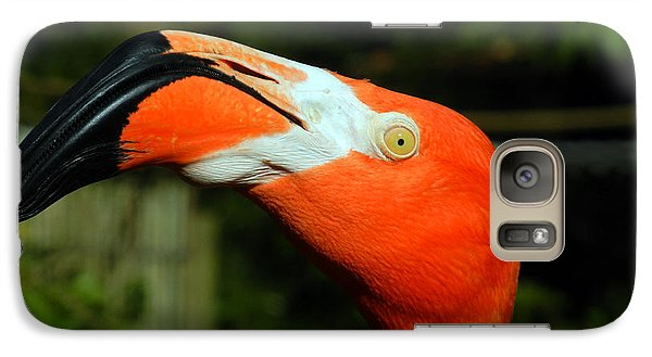 Galaxy Case featuring the photograph Eye Of The Flamingo by Bill Swartwout