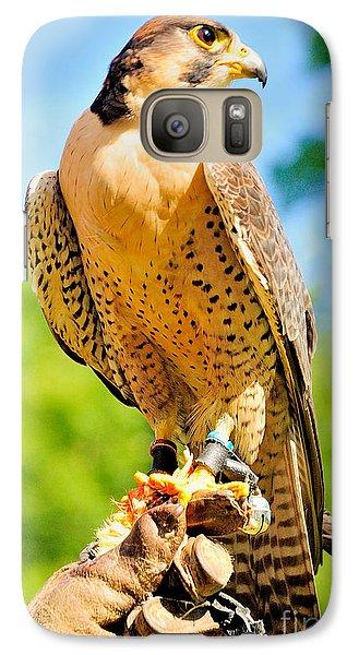 Galaxy Case featuring the photograph Falcon by Nigel Fletcher-Jones