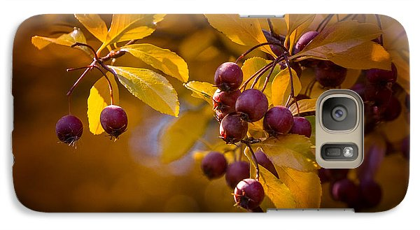 Galaxy Case featuring the photograph Fall Berries by Janis Knight
