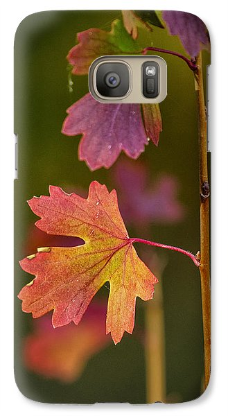 Galaxy Case featuring the photograph Fall Branch by Janis Knight