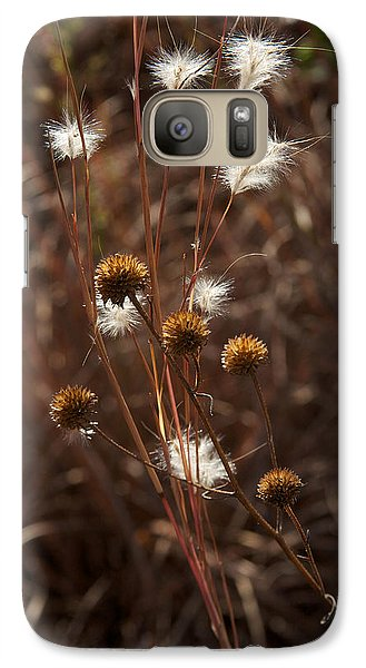 Galaxy Case featuring the photograph Fall Feathers by Jane Eleanor Nicholas