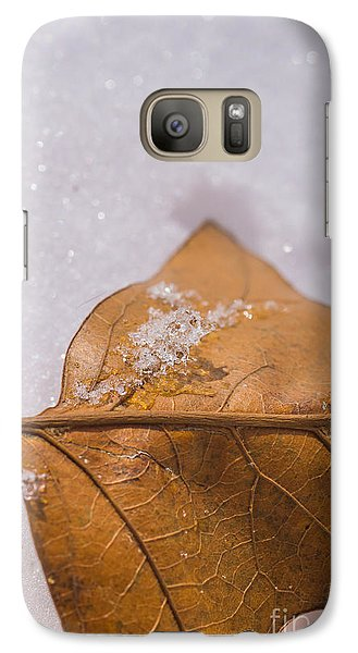 Galaxy Case featuring the photograph Fall Into Winter Glitter by Julie Clements