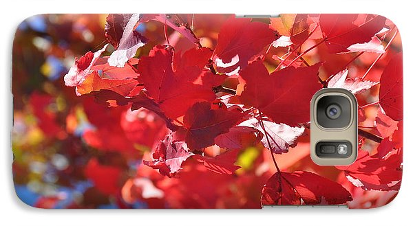 Galaxy Case featuring the photograph Fall Leaves In Oregon by Mindy Bench